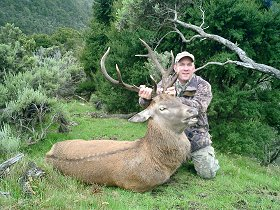 A trophy Red Stag from one of my recent hunting trips to New Zealand